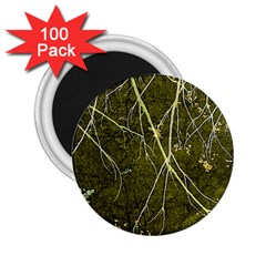 Wild Nature Collage Print 2 25  Button Magnet (100 Pack)
