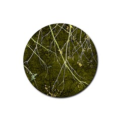 Wild Nature Collage Print Drink Coasters 4 Pack (Round)