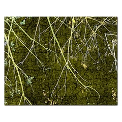 Wild Nature Collage Print Jigsaw Puzzle (Rectangle)