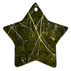 Wild Nature Collage Print Star Ornament (Two Sides)