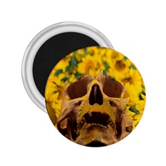 Sunflowers 2.25  Button Magnet