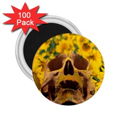 Sunflowers 2.25  Button Magnet (100 pack)