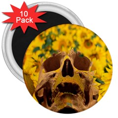 Sunflowers 3  Button Magnet (10 Pack)