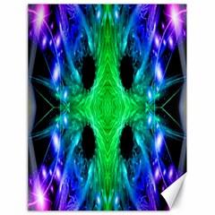 Alien Snowflake Canvas 18  X 24  (unframed)