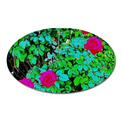 Rose Bush Magnet (oval)