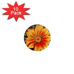 Flower In A Parking Lot 1  Mini Button Magnet (10 Pack)