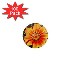 Flower In A Parking Lot 1  Mini Button Magnet (100 pack)