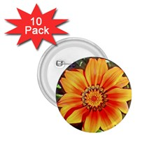 Flower In A Parking Lot 1 75  Button (10 Pack)