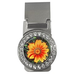Flower In A Parking Lot Money Clip (cz)