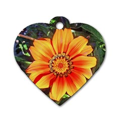 Flower In A Parking Lot Dog Tag Heart (one Sided)