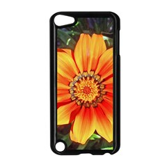 Flower In A Parking Lot Apple iPod Touch 5 Case (Black)