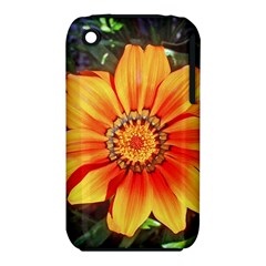 Flower In A Parking Lot Apple iPhone 3G/3GS Hardshell Case (PC+Silicone)