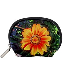 Flower In A Parking Lot Accessory Pouch (Small)