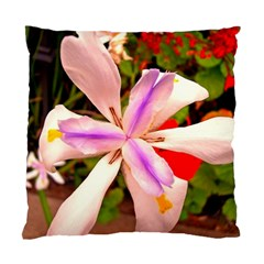 African Iris Cushion Case (two Sided)