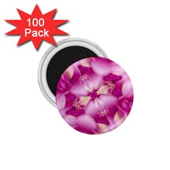 Beauty Pink Abstract Design 1.75  Button Magnet (100 pack)