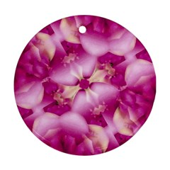 Beauty Pink Abstract Design Round Ornament (two Sides)