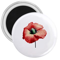 Your Flower Perfume 3  Button Magnet