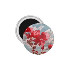 Flowers In The Sky 1 75  Button Magnet