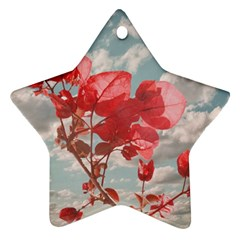 Flowers In The Sky Star Ornament
