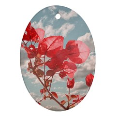 Flowers In The Sky Oval Ornament (two Sides)