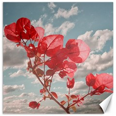 Flowers In The Sky Canvas 12  X 12  (unframed)