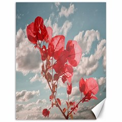 Flowers In The Sky Canvas 12  x 16  (Unframed)