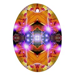 Abstract Flower Oval Ornament