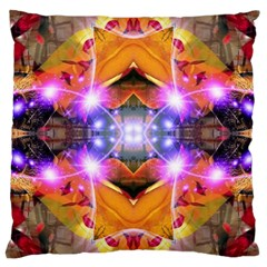 Abstract Flower Large Cushion Case (two Sided)
