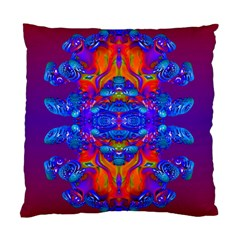 Abstract Reflections Cushion Case (two Sided)
