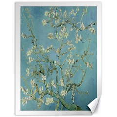 Vincent Van Gogh, Almond Blossom Canvas 18  x 24  (Unframed)