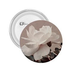 White Rose Vintage Style Photo In Ocher Colors 2 25  Button