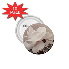White Rose Vintage Style Photo In Ocher Colors 1 75  Button (10 Pack)