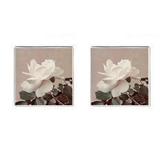 White Rose Vintage Style Photo In Ocher Colors Cufflinks (square)