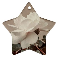 White Rose Vintage Style Photo In Ocher Colors Star Ornament (two Sides)