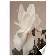 White Rose Vintage Style Photo In Ocher Colors Canvas 20  X 30  (unframed)