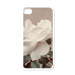 White Rose Vintage Style Photo In Ocher Colors Apple Iphone 4 Case (white)