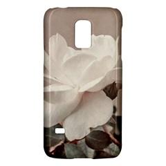 White Rose Vintage Style Photo in Ocher Colors Samsung Galaxy S5 Mini Hardshell Case
