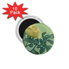 Yellow Rose Vintage Style  1 75  Button Magnet (10 Pack)