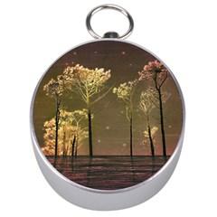 Fantasy Landscape Silver Compass