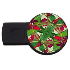 Floral Print Colorful Pattern 4gb Usb Flash Drive (round)
