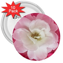 White Rose With Pink Leaves Around  3  Button (10 Pack)