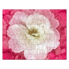 White Rose With Pink Leaves Around  Jigsaw Puzzle (rectangle)