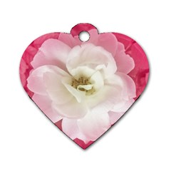 White Rose With Pink Leaves Around  Dog Tag Heart (two Sided)
