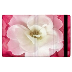 White Rose With Pink Leaves Around  Apple Ipad 2 Flip Case