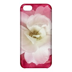White Rose With Pink Leaves Around  Apple Iphone 5c Hardshell Case