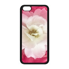 White Rose with Pink Leaves Around  Apple iPhone 5C Seamless Case (Black)