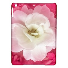 White Rose with Pink Leaves Around  Apple iPad Air Hardshell Case