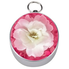 White Rose with Pink Leaves Around  Silver Compass