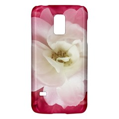 White Rose with Pink Leaves Around  Samsung Galaxy S5 Mini Hardshell Case