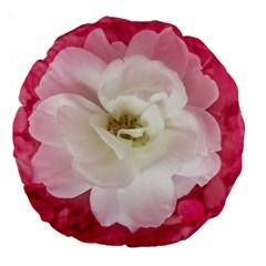 White Rose with Pink Leaves Around  18  Premium Flano Round Cushion